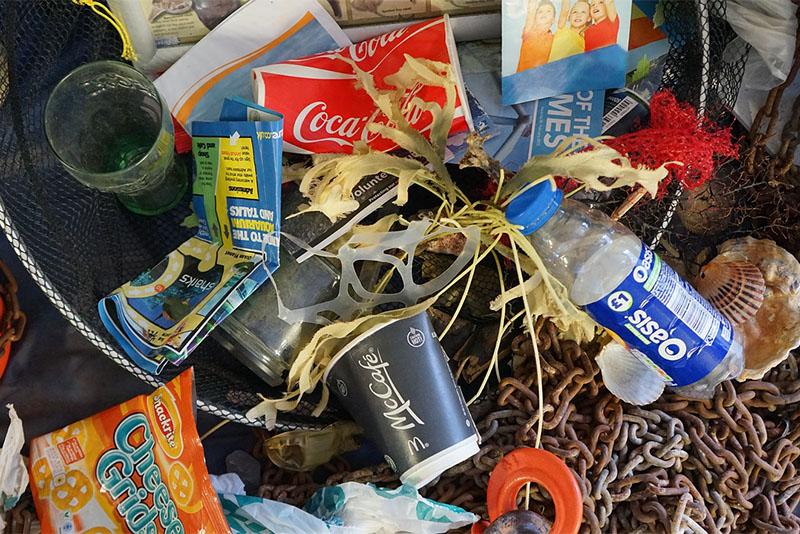今話題のプラスチック問題を紐解く!私たちは何ができるのか?